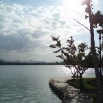 Shijiazhuang Plant Garden