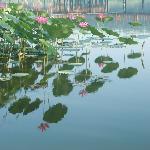 Baiyang Lake Entertainment Center