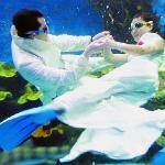 海洋馆里的水下表演