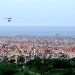 夏日海滩,很多游人洗海水澡