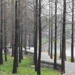XuanWu Park