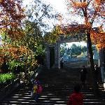 Huangdaxian Chisong Garden