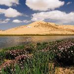 Sand Island of Qinghai Lake