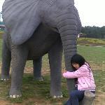 熊屁屁和大象。