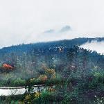 Leidong Ping