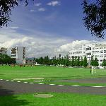 Foto de Dali University