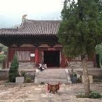 Dayun Institute
