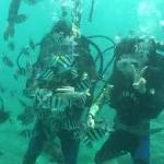 我们的蜜月旅行之潜水