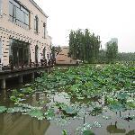 Foto de Songjiang Ecological Country Club
