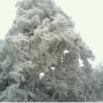 天湖山雪景1