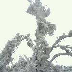 天湖山雪景4