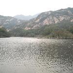 Chaya Mountain
