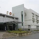 Xingyuan Binguan