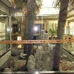 Photo of Yangzi Hotel