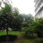 酒店自己的绿地