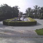 IMG_20111115_092351