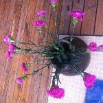 客栈角落的鲜花