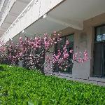 Foto de Wanshouzhuang Hotel