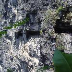 Xiaolong Cave Falls