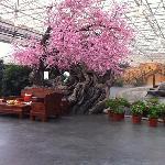 ภาพถ่ายของ Peach Blossom Manor