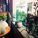Bilde fra Lingyin Ferry Youth Hotel