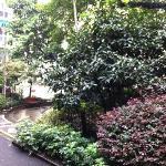 重庆科技学院老校区