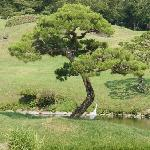 Suisenji Temple