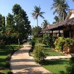 热带风情的酒店环境