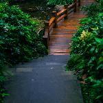 早餐餐厅外面通往山下大堂的一段小桥