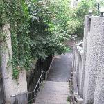 通往干休所的台阶