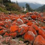 燕子沟的红石滩