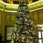 和平饭店大堂圣诞树