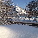 大雪过后的麦田旁