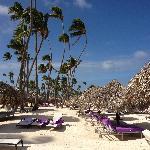 """客人可以随意地躺在椅子上吹吹风,有范围区分(紫色是本酒店的),树叶做成的""""太阳伞""""还可以遮风避雨呢,躺在沙滩椅子上看着深蓝的天空,感受温暖的海风,听着一阵阵的海浪潮来潮去,一个下午就这样过去了"""