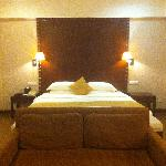 Delux kind size bed room