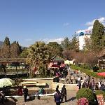 Ximen Park, Linchuang