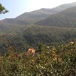 Shehu Mountain