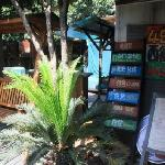 Photo of Four Eyes Backpackers International Youth Hostel