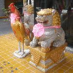 不知道是不是过中国新年特地把它们这样打扮的,酒店门口的动物