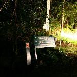 自然桥,看萤火虫的地方