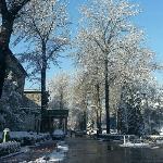 三号楼前雪景