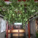 Foto de Longdu Quick Hotel