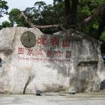 Mt. Beifeng Forest Park