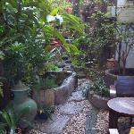 酒店的小花园