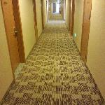 长长地走廊
