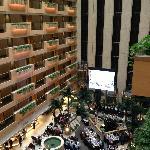 酒店餐饮区
