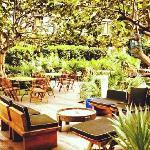 酒店的树林