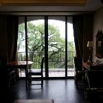 喜欢的那个房间,正对樟树。