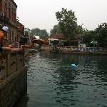 在王府池子里面游泳真享受呀!