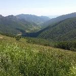 黄岗梁国家森林公园